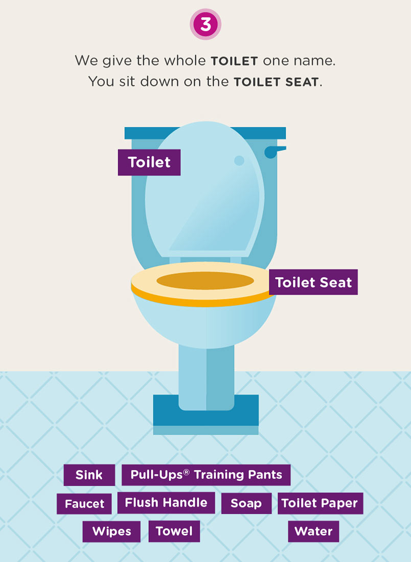 Infographic of a toilet and additional bathroom items
