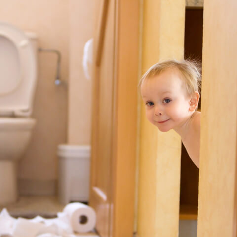 The items parents will need to begin potty training